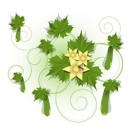 the gherkin: cucumber Illustration