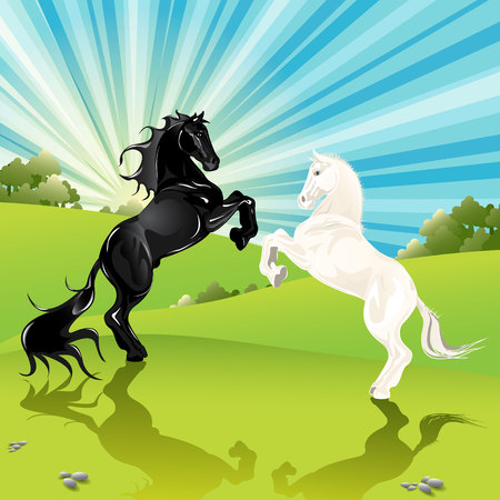 white horse: pair of the horses