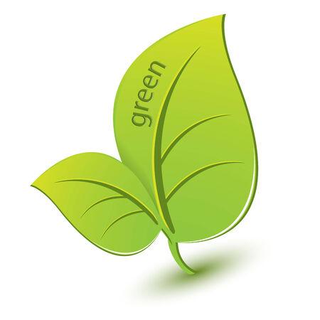 green sheet Vector
