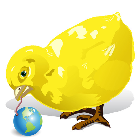 chicken Stock Vector - 8450963