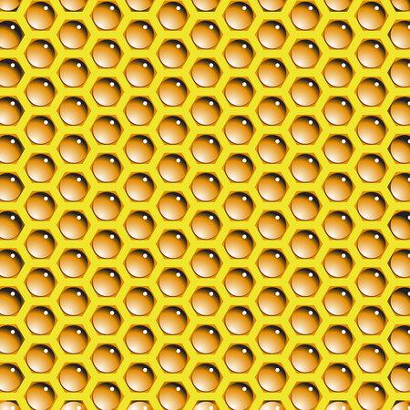 honey bee: honey
