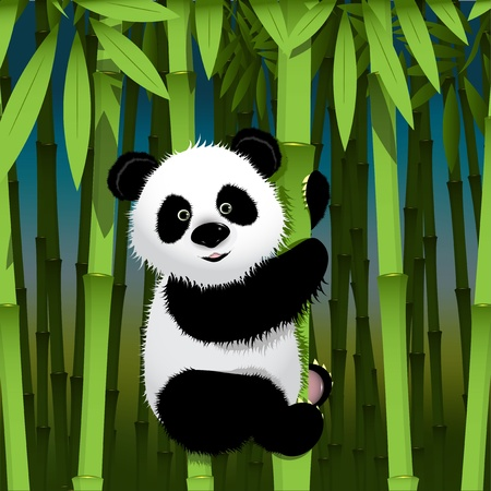 illustration, curious panda on stem of the bamboo Illustration
