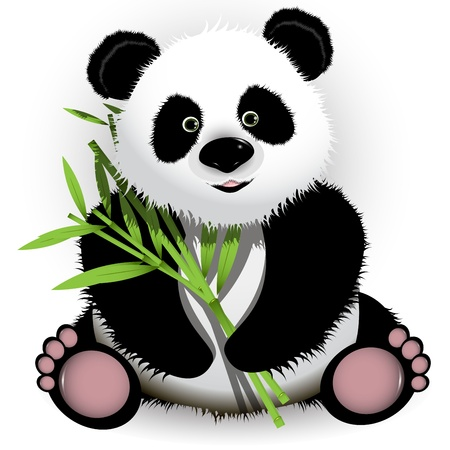 panda bear: illustration curious panda on stem of the bamboo