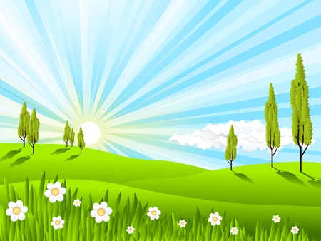 illustration, landscape with green field and trees Stock Vector - 11065716