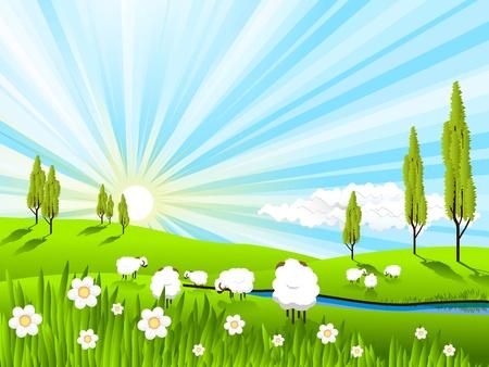 illustration, white sheeps on pasture on solar sky 向量圖像
