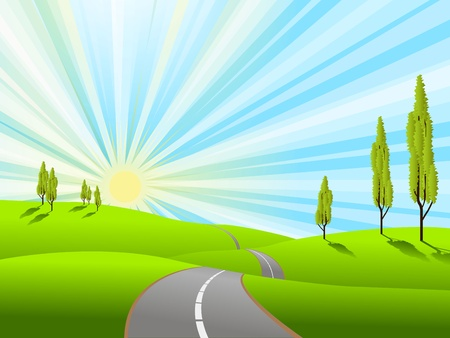 sun road: illustration landscape with green field and road