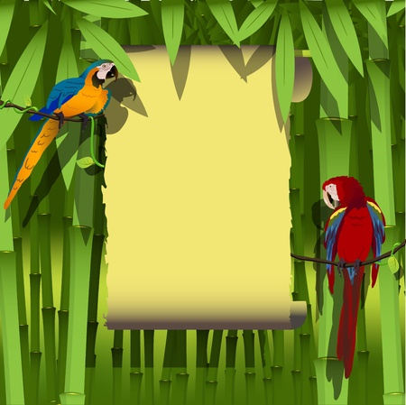 illustration, two bright parrot on a branch of liana