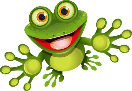 sapo: ilustración, feliz, verde rana con ojos más Vectores