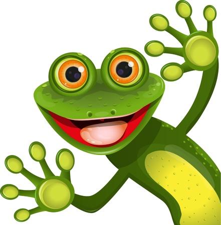 sapo: ilustración, alegre verde rana con mayor ojo