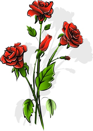 illustration insulated bouquet of the red rose on white background Stock Vector - 15576056