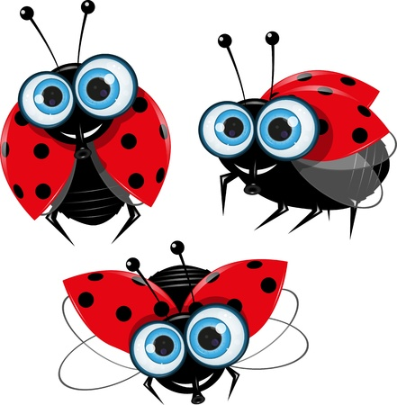 illustration of three ladybirds with big eyes Stock Vector - 16822685