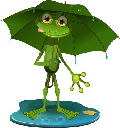 blue frog: ilustraci�n verde rana con un paraguas verde Vectores