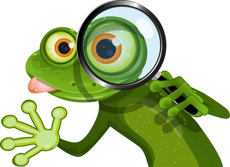 illustration green frog with big eyes and a magnifying glass