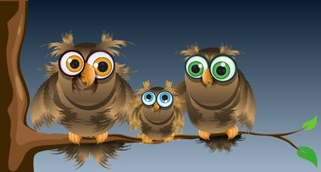 illustration of family owls sitting on a tree branch Vector