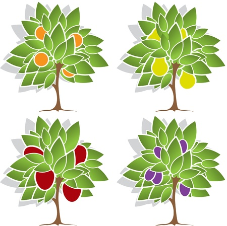 pear tree: illustration of a set of four different fruit trees