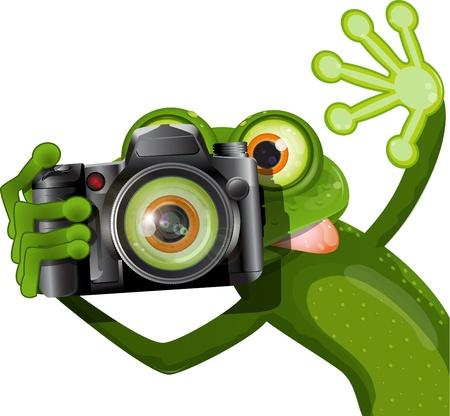 sapo: ilustraci�n alegre rana verde con una c�mara