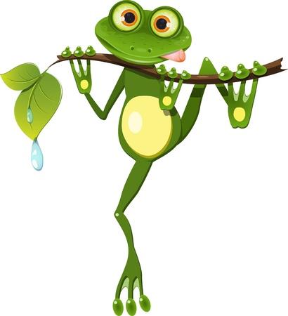 tree frogs: ilustraci�n curiosa rana en el tronco del �rbol