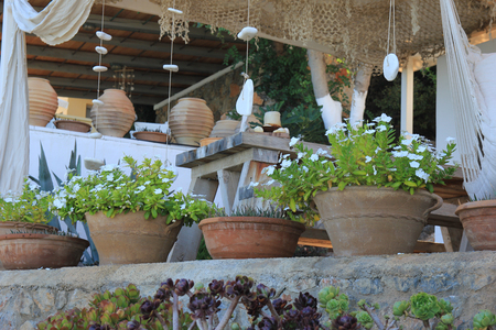 summer terrace with ceramic pots surrounded by tropical plants Stock Photo - 22682015