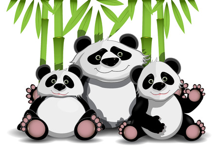 panda: Illustration of family of three pandas and bamboo Illustration