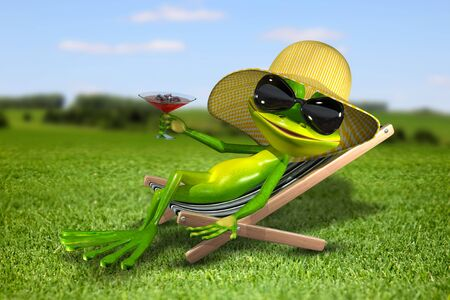 triton: Illustration frog in a deck chair on the grass