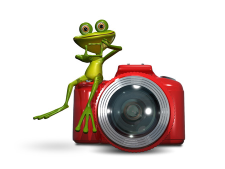 triton: Illustration of green frog on a red camera