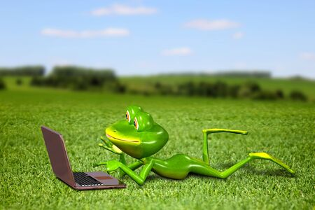 paw smart: Illustration frog with a laptop on the grass Stock Photo