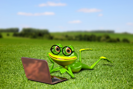 brooding: Illustration frog with a laptop on the grass Stock Photo
