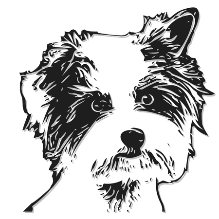 small dog: Illustration Figure Little Dog on a White Background Illustration