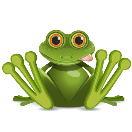 Stock Illustration Fat Frog on a White Background