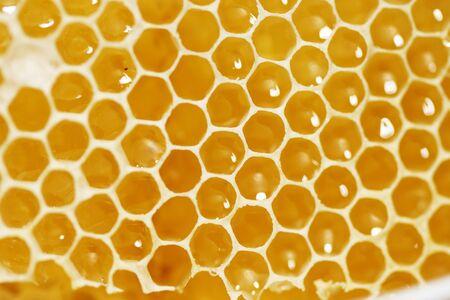 Macro shot of a Honeycomb with liquid honey
