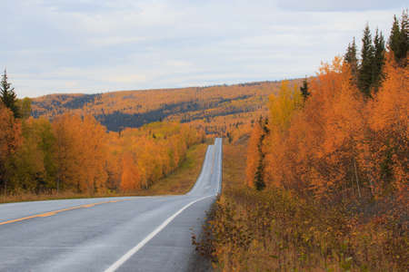 The Drive to Autumn