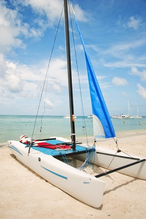 hobie: Hobie catamaran sailboat pulled up onto the beach