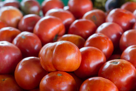 Fresh Tomatoes at a Produce Stand