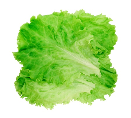green leafy vegetables: Fresh lettuce isolated on white background