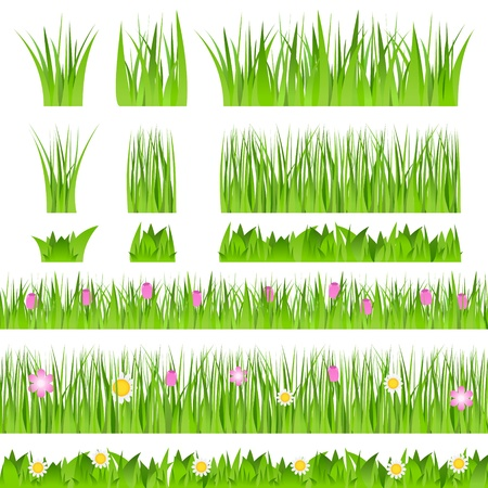 long life: Grass Illustration