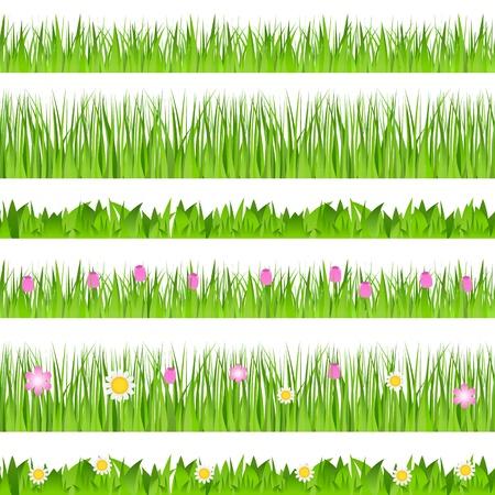 kamille: Satz von nahtlosen Gras