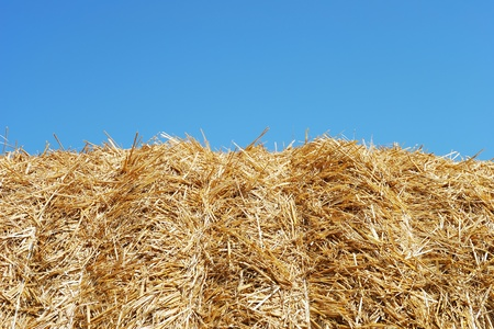 Close-up of a hay bale photo