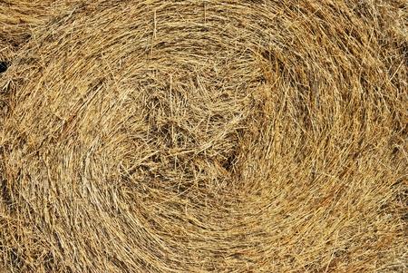 Close-up of a haystack photo