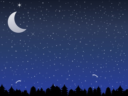 moon night: Silhouette of a forest and night sky with stars and moon, vector illustration