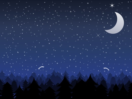 moon and stars: Silhouette of a forest and night sky with stars and moon, vector illustration