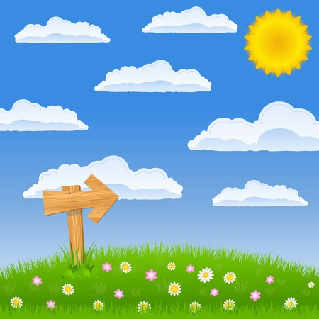 wild nature wood: Green field with wooden arrow sign and blue sky with sun and clouds Illustration