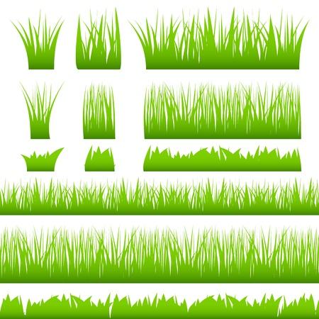 Silhouette d'herbe verte Vecteurs