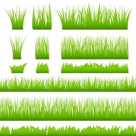 tuft: Silhouette of green grass Illustration