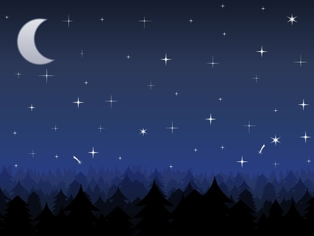 stellate: Night in a forest Illustration