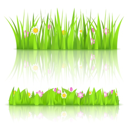 Green grass with flowers Stock Vector - 12483315