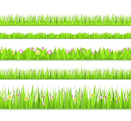 Seamless green grass Vector