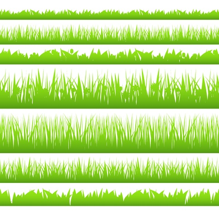 silhoette: Silhoette of seamless grass