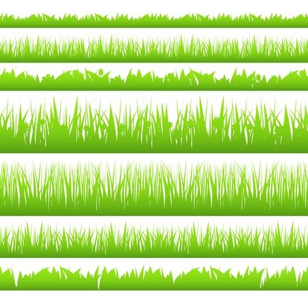 grass close up: Silhoette of seamless grass