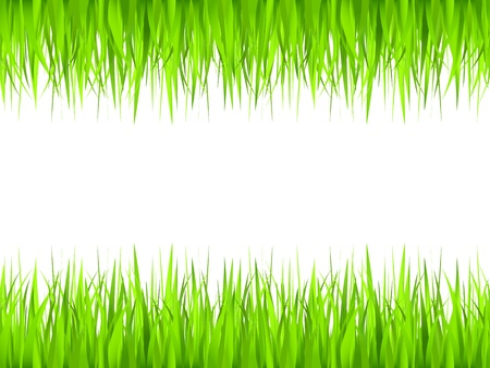 Grass frame Vector