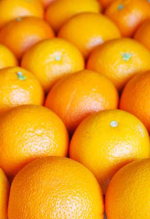 segment: Rows of oranges